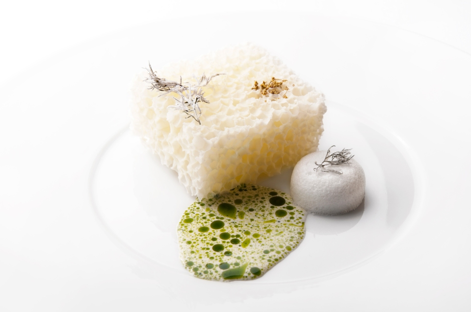 Aerated white chocolate with lime and fennel. Photo: Laura Lajh Prijatelj